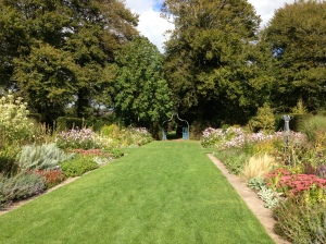 This is one of Eight Gardens at Ballymaloe and my walking path to the School.